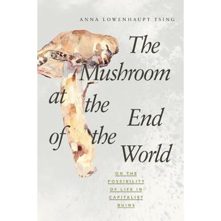The Mushroom at the End of the World : On the Possibility of Life in Capitalist