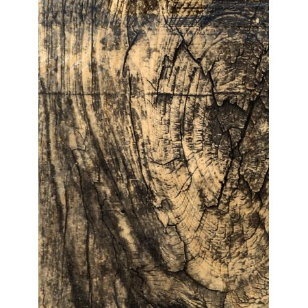 Real Wood Paper Sheets rustic birch, 8 1/2 in. x 11 in., adhesive backing (pack of - Rustic Paper