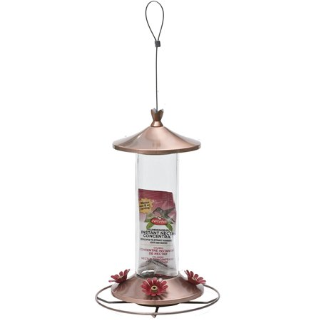 710B Elegant Copper Glass Hummingbird Feeder with Free Nectar, from US,Brand generic ()