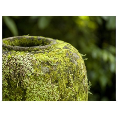 Great BIG Canvas | Rolled Keith Levit Poster Print entitled Moss Covered Urn