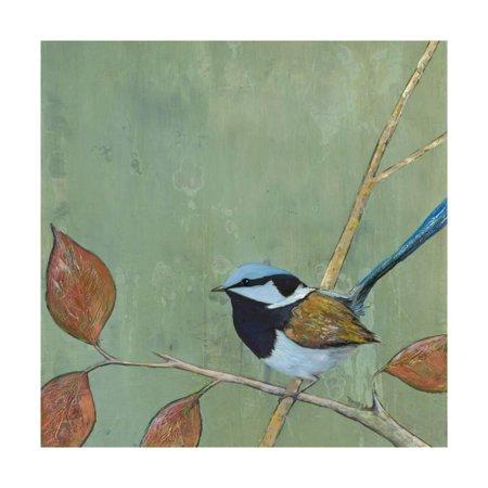 Resting Bird I Print Wall Art By Mehmet Altug (Resting Bird)