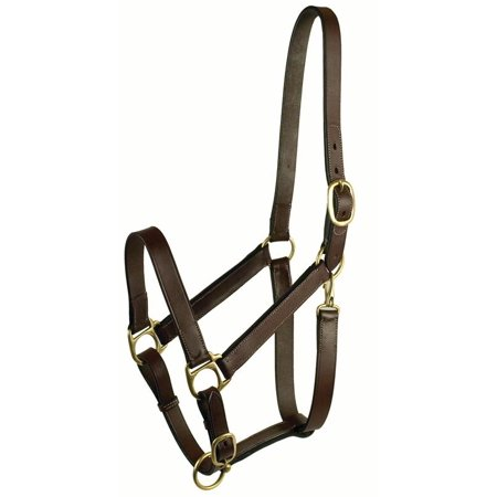 Gatsby Leather Company-Stable Halter With Snap- Havanna Brown Large Horse