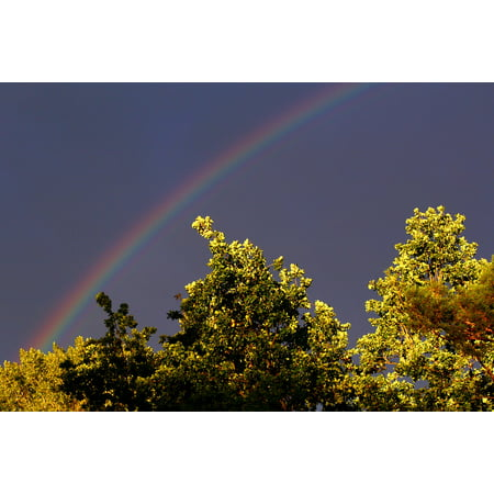 Framed Art for Your Wall Natural Spectacle Mood Sky Color Rainbow Nature 10x13 (Online Shopping For Spectacle Frames)