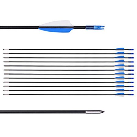 """CUPID 31"""" Training Arrows-Archery Practice Target Arrows with Durable Shaft Blunt Tip for Kids Youth or Beginners on Recurve Bow Long Bow (12pcs Arrows, Blue) thumbnail"""