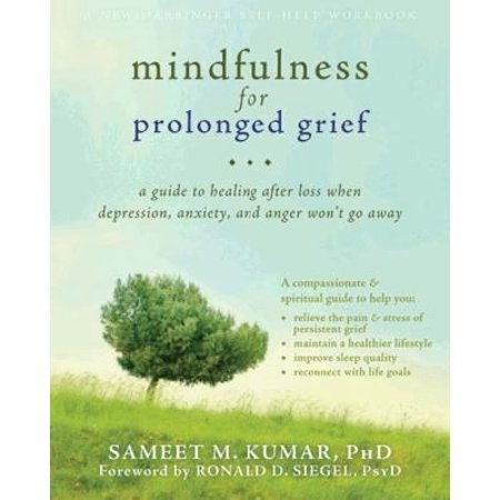 Mindfulness For Prolonged Grief  A Guide To Healing After Loss When Depression  Anxiety  And Anger Wont Go Away