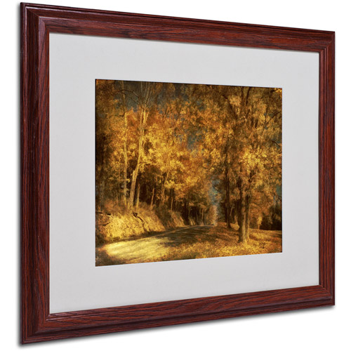 "Trademark Fine Art ""Back Roads"" by Lois Bryan, Wood Frame"