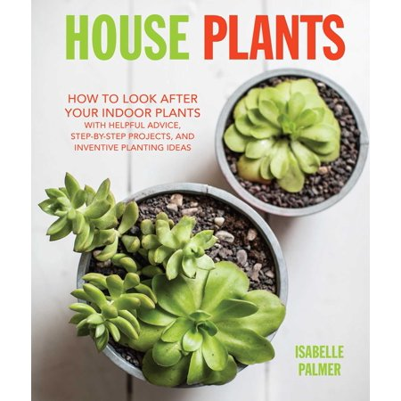 House Plants : How to look after your indoor plants: with helpful advice, step-by-step projects, and inventive planting ideas - Inventive Halloween Ideas