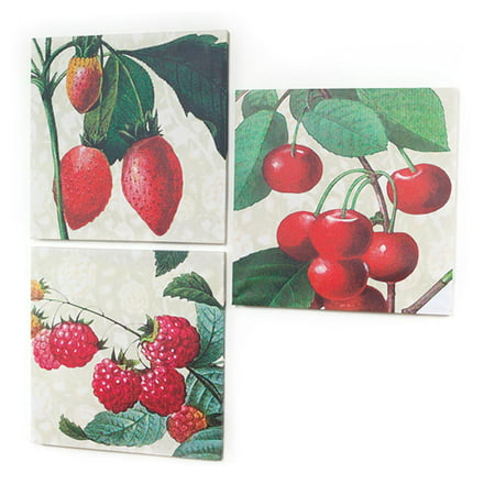 Set of 3 Farm Fresh Strawberry, Cherry & Raspberry Decorative Wall Art Canvases