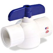 NDS PVC Ball Valve,Inline,FNPT,1 in EBV-1000-T