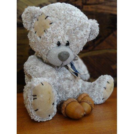 Framed Art For Your Wall Plush Mascot Cuddly Teddy Bear Fun 10x13 Frame