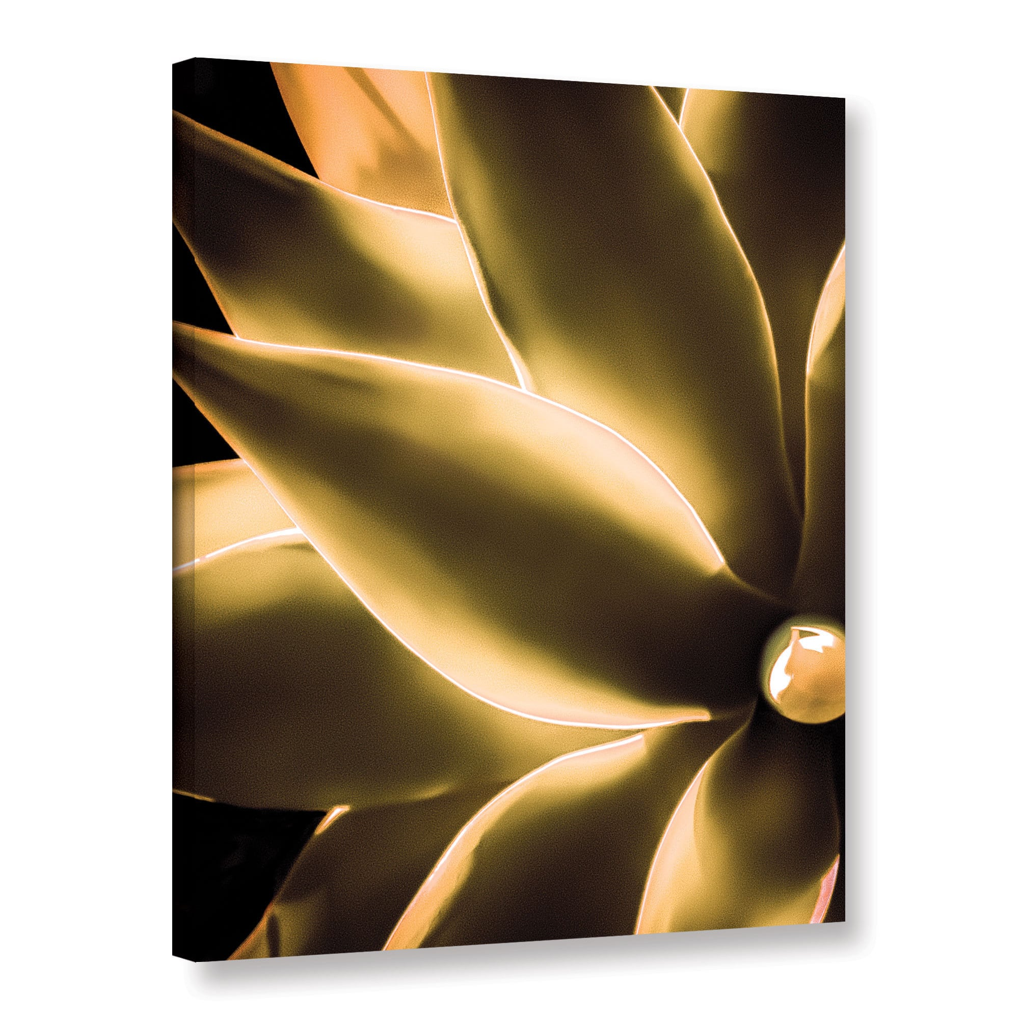 Artwall Richard Jamess Incandescence Gallery Wrapped Canvas