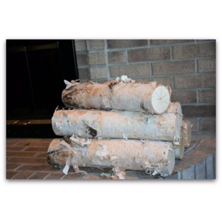 Large Fireplace White Birch Logs 5 Logs 20 Long X 3 5 Diameter