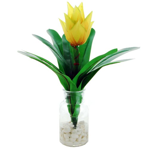 Bay Isle Home Tropical Floral Arrangement