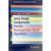 Lossy Image Compression : Domain Decomposition-Based Algorithms