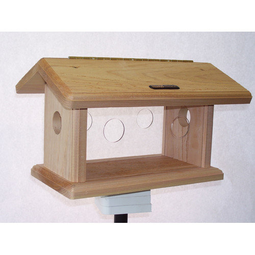 Birds Choice Natural Cedar Bluebird Feeder