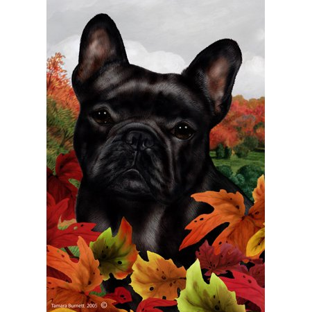 French Bulldog Black - Best of Breed Fall Leaves Garden