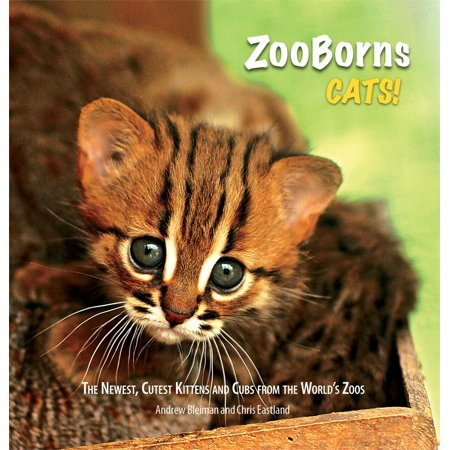 ZooBorns Cats! : The Newest, Cutest Kittens and Cubs from the World's