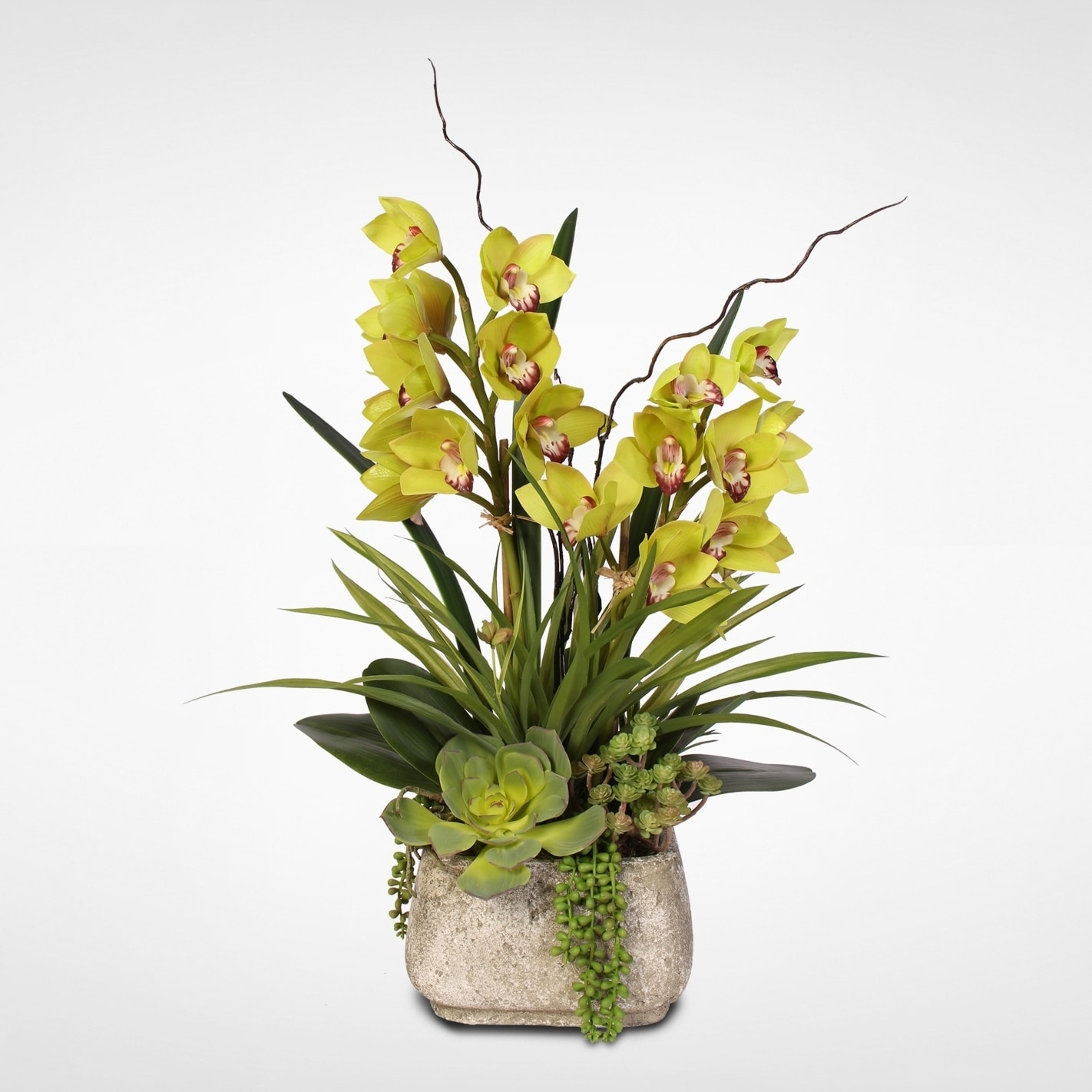 Green Real Touch Orchid & Artificial Succulents in a Cement Pot