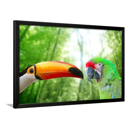 Toco Toucan And Military Macaw Green Parrot Framed Print Wall Art By holbox ()