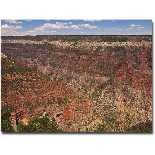 "Trademark Fine Art ""Green Canyons"" Canvas Wall Art by Ariane Moshayedi"