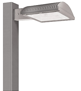 RAB Lighting 50W LED ALED50 Cool Type III Gray Area Light with 8in Pole With 480V Swivel Photocell