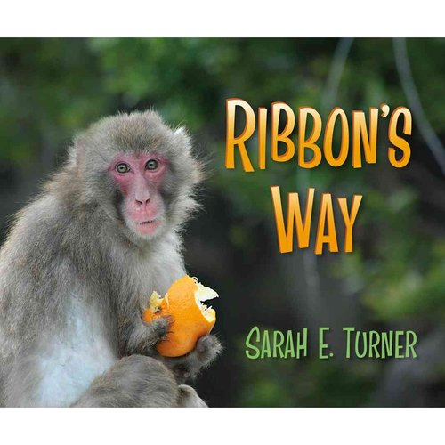 Ribbon's Way