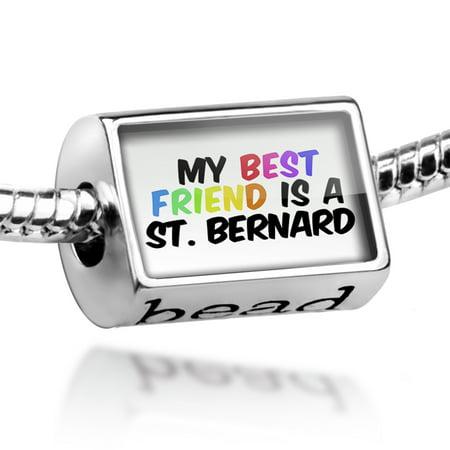Bead My best Friend a St. Bernard Dog from Italy, Switzerland Charm Fits All European