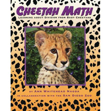 Cheetah Math : Learning About Division from Baby Cheetahs - Baby Cheetah Games