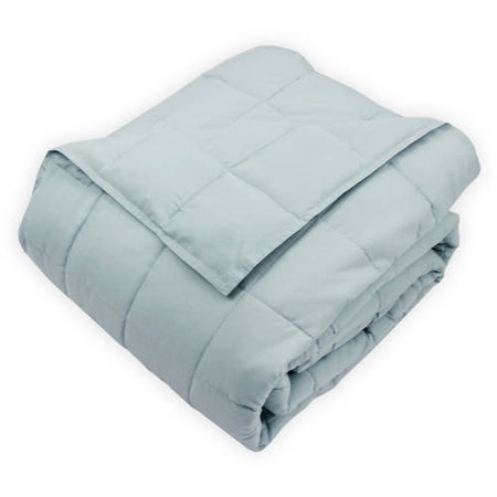 Soft-Touch Quilted Microfiber Comforter in Light Blue, - Twin Quilted Organic Wool