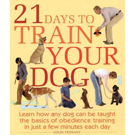 21 Days to Train Your Dog : Learn How Any Dog Can Be Taught the Basics of Obedience Training in Just a Few Minutes Each (Best Dogs To House Train)