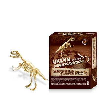 Early Education Large Dinosaur Skeleton Excavation Kit Assembled Toy with  Digging Tools Specification:Tyrannosaurus Rex | Walmart Canada