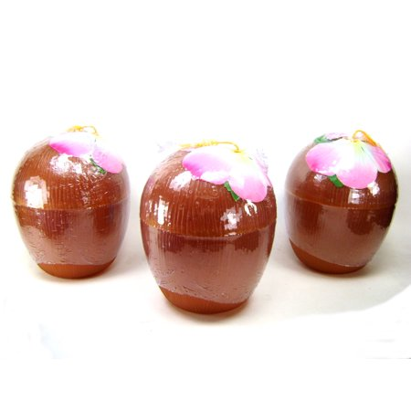 COCONUT CUP SET OF 3 Luau Party Plastic Drinking Glass Tiki Decoration Decor (Coconut Glasses)
