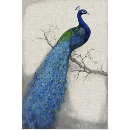 Great BIG Canvas | Rolled Tim O'Toole Poster Print entitled Peacock Blue I ()