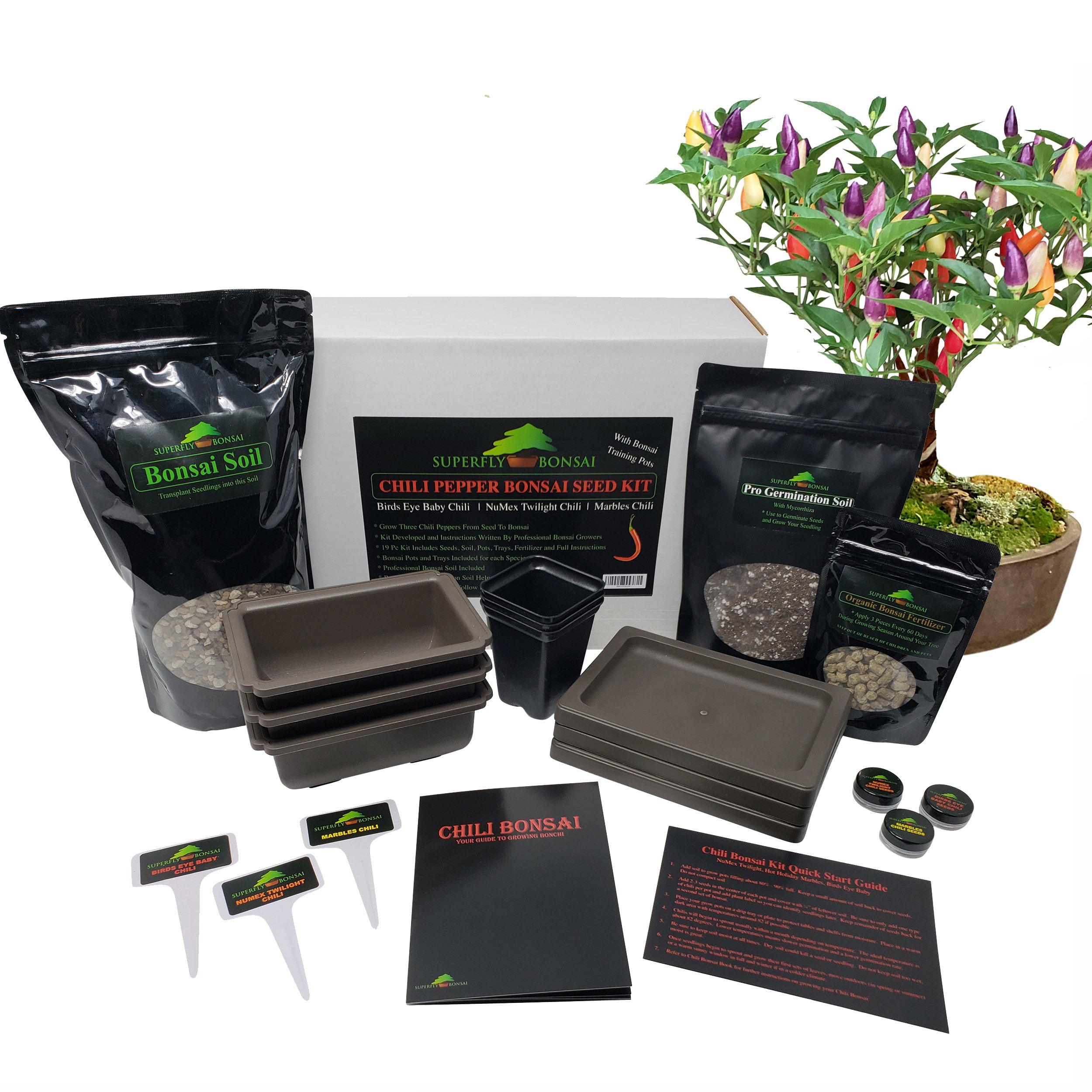 Bonchi Chili Pepper Bonsai Tree Growing Seed Kit Level3 Walmart Com Walmart Com