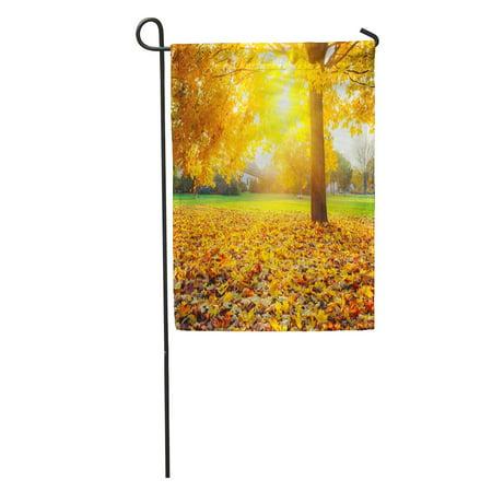 LADDKE Yellow Fall Colorful Foliage in The Autumn Park Orange Landscape Garden Flag Decorative Flag House Banner 28x40 inch ()