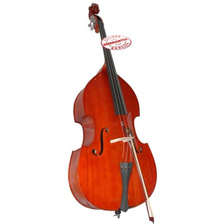Upright Bass (D'Luca 4/4 Upright Double Bass with Bag and Bow)