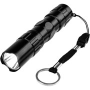 Proline PLMF Mini Flashlight