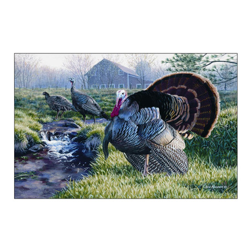 Custom Printed Rugs Wildlife Turkey Green/Gray Area Rug