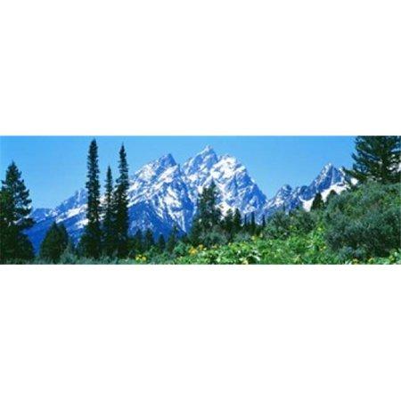 Images panoramiques PPI67519L Parc national de Grand Teton WY Etats-Unis d'affiche par images panoramiques - 36 x 12 - image 1 de 1