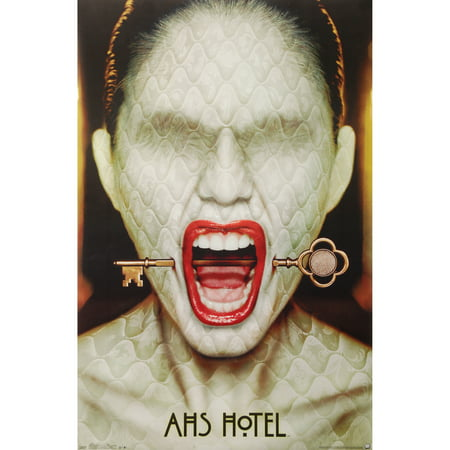 American horror story domestic poster for American horror story wall mural