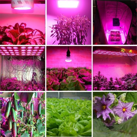 Ktaxon 1000w Double Chips Led Grow Light Full Specturm For