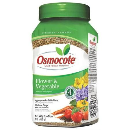 Osmocote Flower - Osmocote Flower And Vegetable Smart Release Plant Food
