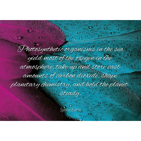 Sylvia Earle - Famous Quotes Laminated POSTER PRINT 24x20 - Photosynthetic organisms in the sea yield most of the oxygen in the atmosphere, take up and store vast amounts of -