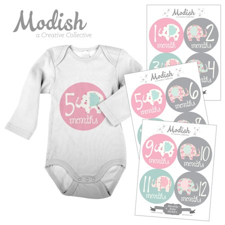 Modish Monthly Baby Stickers, Girl, Elephant, Pink, Mint, Baby Photo Prop, Baby Shower Gift, Baby Book -