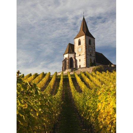 Hunawihr, Alsatian Wine Route, Alsace Region, Haut-Rhin, France Print Wall Art By Walter