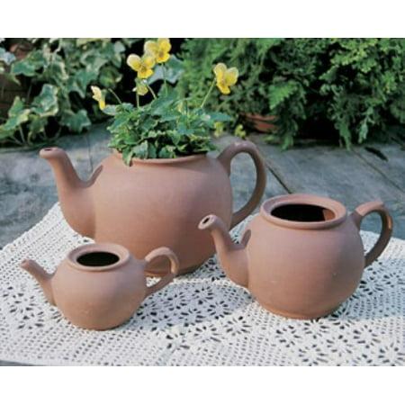 Brand New TPOTM-5 medium english teapot planter One Only](Teapot Planter)