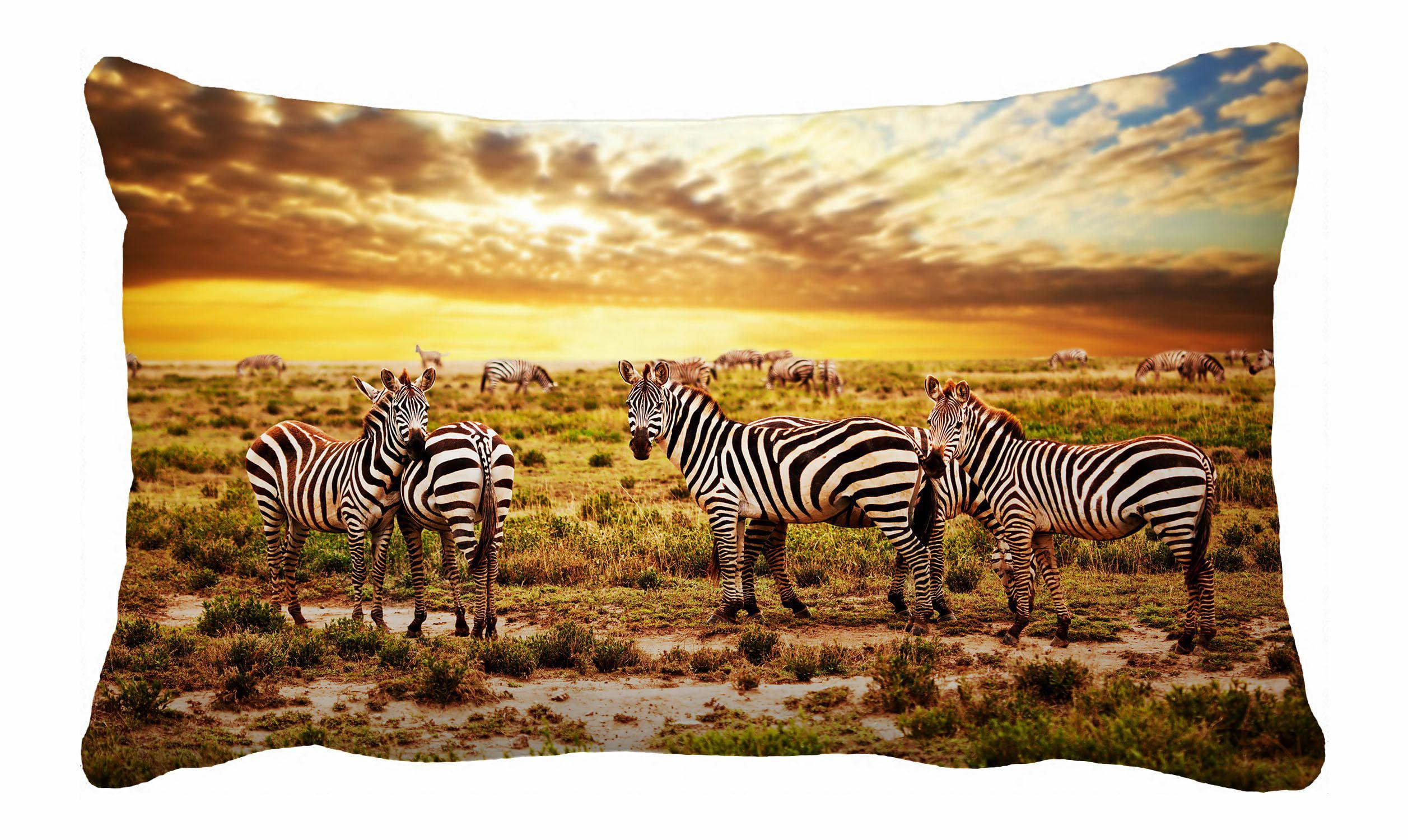 Phfzk Beautiful Sky Cloud Pillow Case Safari Zebras Herd On Savanna At Sunset Africa Pillowcase Throw Pillow Cushion Cover Two Sides Size 20x30 Inches Walmart Com Walmart Com