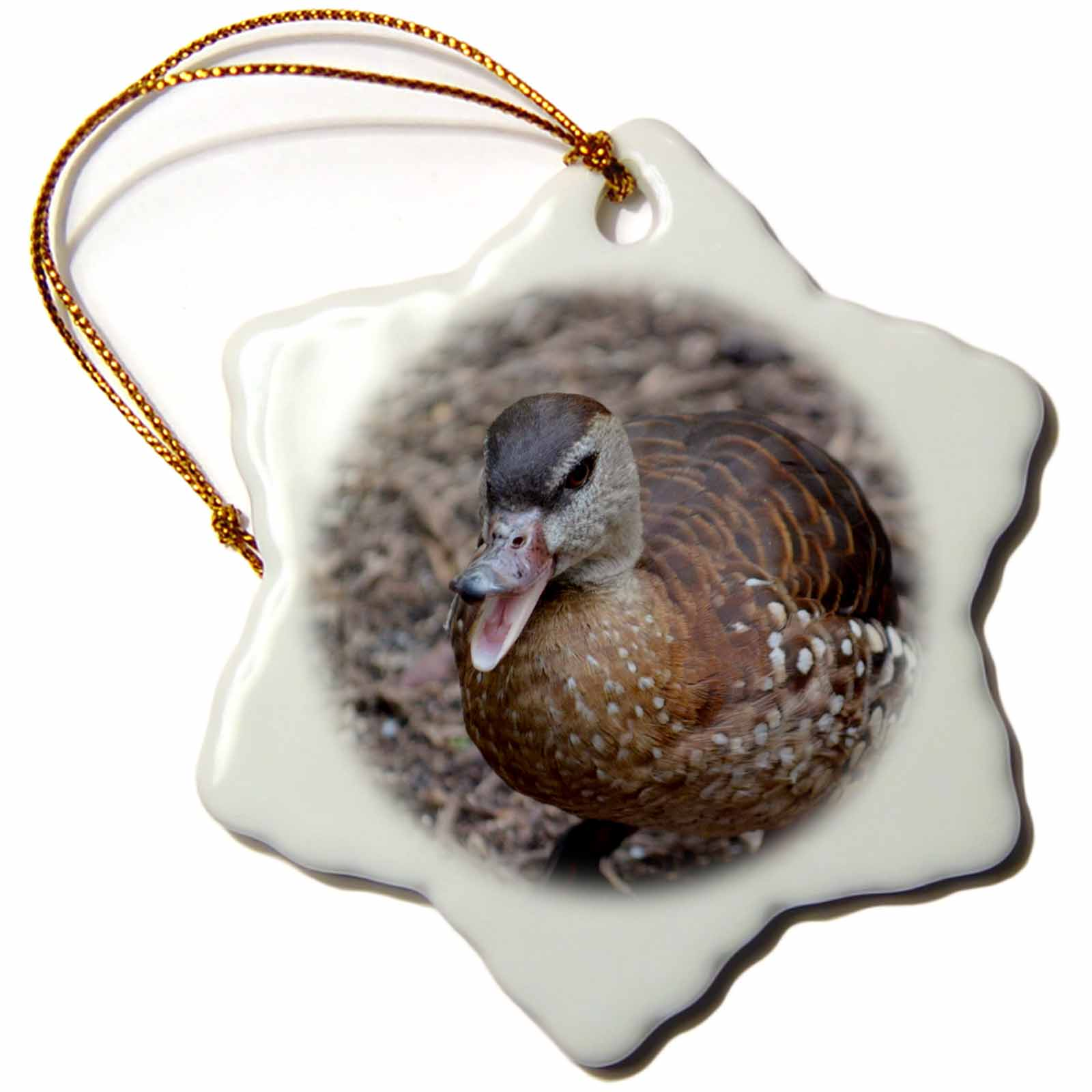 3dRose brown duck quacking at camera, Snowflake Ornament, Porcelain, 3-inch