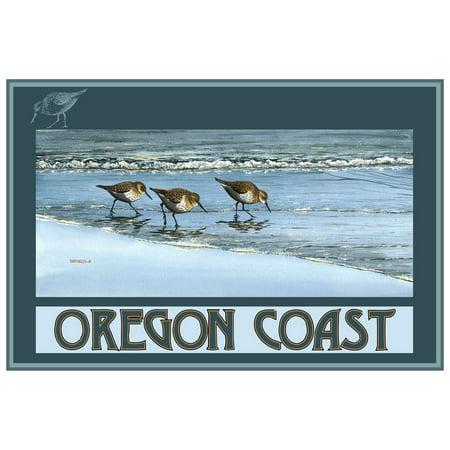 Oregon Coast Birds At Beach Giclee Art Print Poster by Dave Bartholet (12