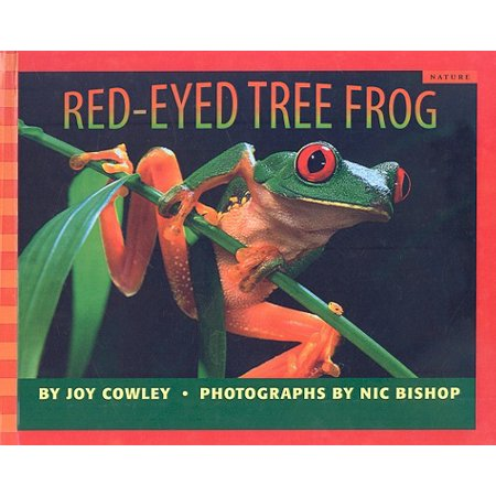 Scholastic Bookshelf: Nature: Red-Eyed Tree Frog - Tree Frog Coloring